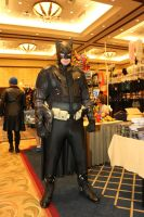 AFO 2015: Batman by pgw-Chaos