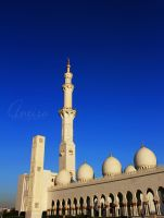 AD Zayed mosque by amirajuli