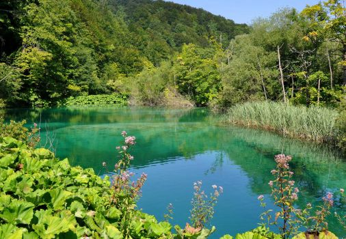 Green and Blue: Plitvice by saguara