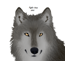 Wolf I'm very proud of by TayMay135