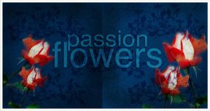 passion flowers 004 by imadawwas