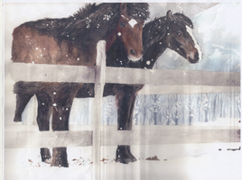 Horses in the Snow by Unconceivable