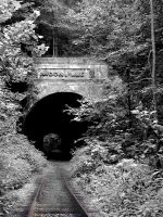 Moonville Tunnel by bkueppers