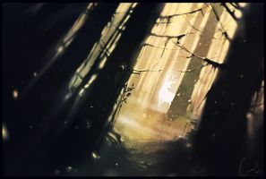 deep forest by GaudiBuendia