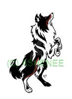 ::Standing Collie Tribal:: by Ashenee