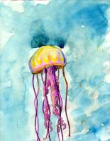 Art366 54 Jellyfish by Timmytushoes