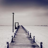 Long Path by Aiae