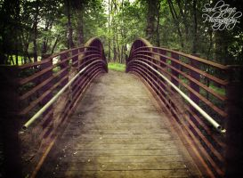 Brandenburg Park Bridge by GothicAmethyst