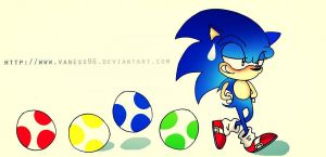Follow the Sonic by vaness96