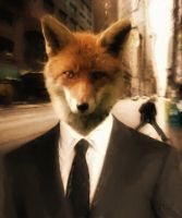 City Fox, unframed by Aethersis
