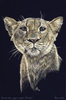 Scratch art: Lioness by theOlven