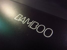 Bamboo by TheRestOfGuys