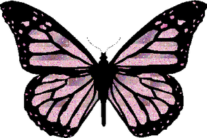 Lovely Butterfly PNG by SugarPaula