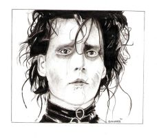 Edward Scissorhands 01 by Deinslef