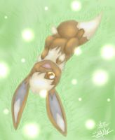 Eelco the eevee. by Darkashter