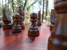 Wooden Chess by 1000VoltFox