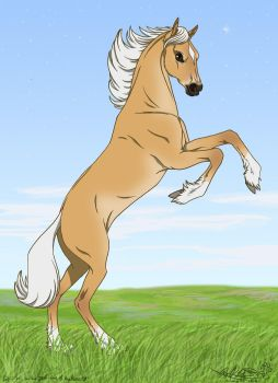 Spiira for the 2014 Year of the Horse by Falcolf