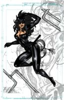 catwoman by franganesques by carol-colors