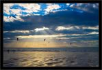 Fly away by moinerus