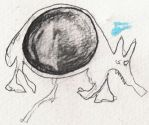 aardvark with large womb by fetusgonewild