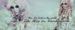 Audrey Kitching banner by acidlor