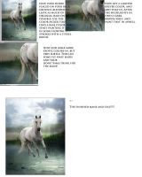 How to Paint Manes and Tails by Continuoso