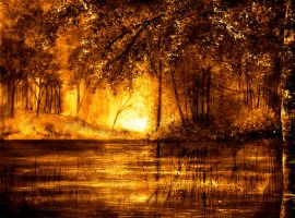 PAINTING: Evening Reflections by AnnMarieBone