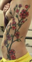 kortney's cherry blossoms by Phedre1985