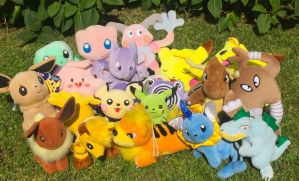 Taiwan Mirage Pokemon Plush Recent Gets! by MizukiiMoon
