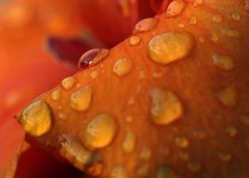droplets again by vw1956stock