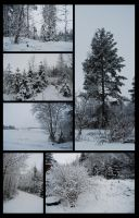 Winter Package I by Eirian-stock
