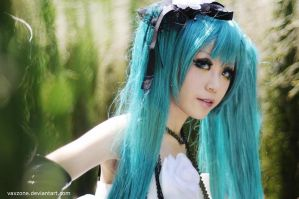 Miku, look for me by vaxzone