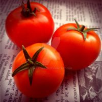 NovemberTomatoes by Climate Change by BlastedFen