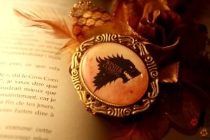 Winter is Coming Brooch by v-allegrini
