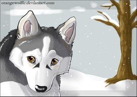 so cold by Chrizka