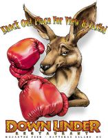 Boxing Roo by obxrussell