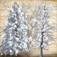 SnowyTrees-justalittleknotty by Just-A-Little-Knotty