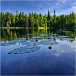 Black Lake.. Valaam Islands.. by my-shots