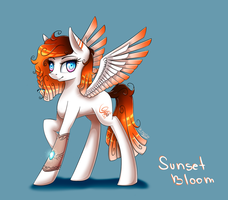 MLP - Sunset Bloom /MY OC/ by WingsterWin