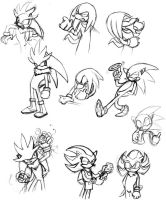 Sonic Rivals by anniemae04
