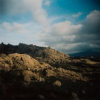 Holga Collection VIII by 1uno