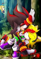 Sonic OC IrisEliza and Shadow by skyshek