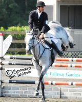 Sept HT: Show Jumping by zeeplease