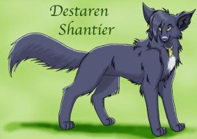 Destaren Shantier by Kimai