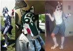 AnimeNext 2012 Wolf Link Cosplay by Feather-Dragon