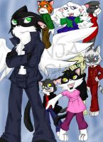Collection of Cats by galaxyofgover