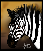 Zebra by TheMysticWolf