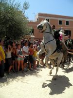sant joan 2011 11 by EmberRoseArt