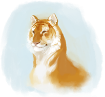 Tiger Doodley by harrie5