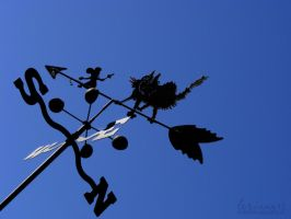 Which Way The Wind Blows by imthinkingoutloud